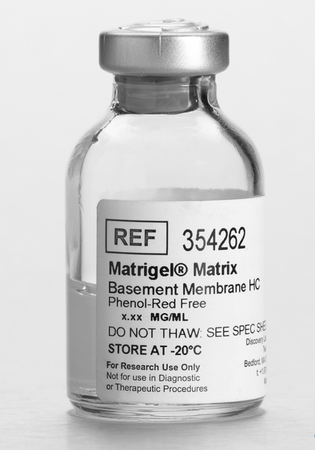 Corning® Matrigel® Matrix High Concentration (HC), Phenol-Red Free, LDEV-free, 10 mL
