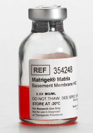 Corning® Matrigel® Basement Membrane Matrix High Concentration (HC), LDEV-free, 10 mL